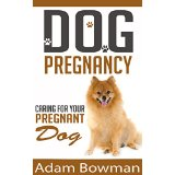 Dog Pregnancy: Caring For Your Pregnant Dog